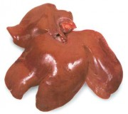Домашняя говяжья печень